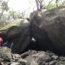 Boulder Explorering  Tour